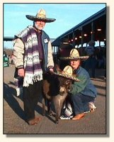 Skylar, Sandy, & Bob at the Volunteer Horse Fair 2002 (11,398 bytes)